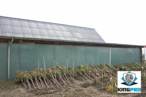 Filet brise-vue - filet d'ombrage 150gm² anti-uv ombrage 72 - KINGPRO - 2m x 50m - filet clôture